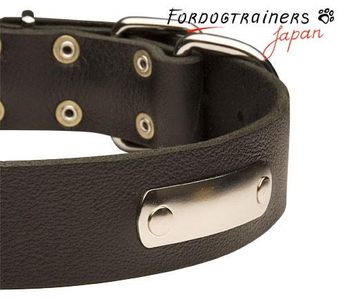 ネームプレート付きレザーの犬用首輪