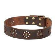 犬の散歩用真鍮製のスタッズ付き首輪
