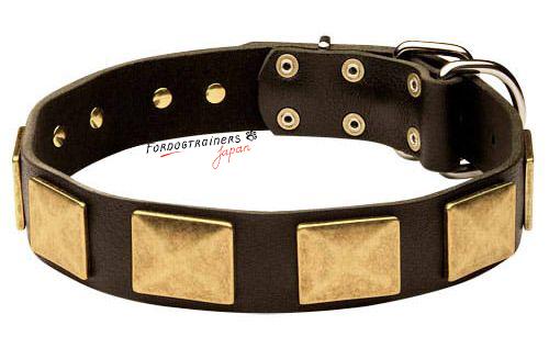 レザー犬の首輪