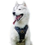 中・大型犬用ハーネス【本革製】