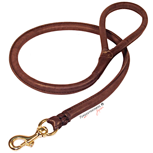 Dog Training Leads And Collars