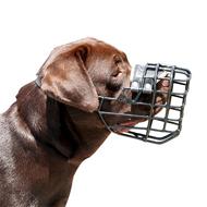 スパイク付き革の製中・大型犬用ハーネス