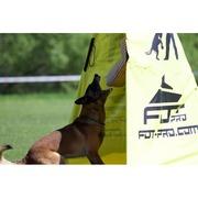 犬訓練用ダンベル (1000 g)