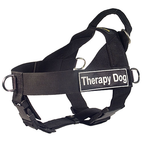 Harness with Therapy Dog Patch