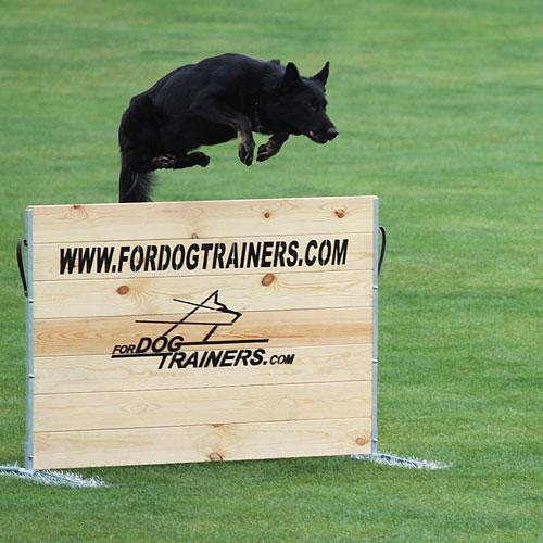シュッツフント犬訓練用ジャンプ