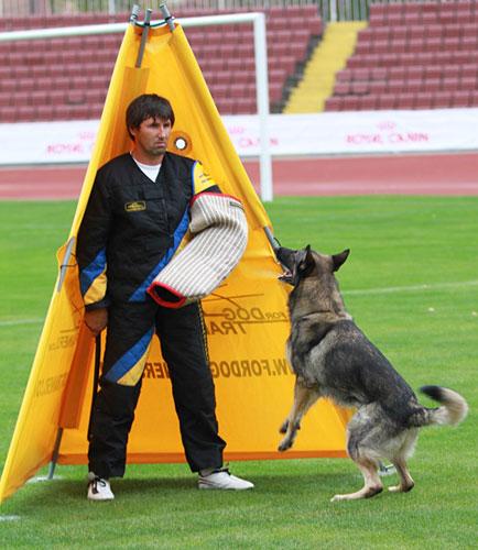 犬訓練用具、ブラインド、片袖とムチ
