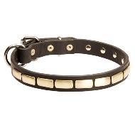 犬用レザー首輪 真鍮製スタッズ付
